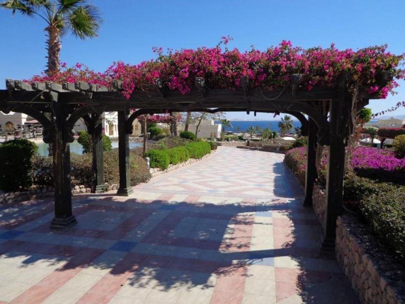 Ausflug zum Strand mit Stadtrund Fahrt in Safaga