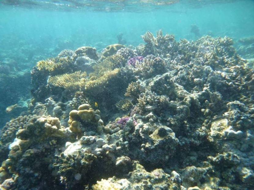 Halbtauchendes U-Boot ab Sharm El Sheikh Hafen